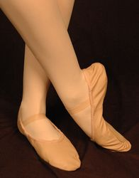 Adult Ballet Slipper - Bloch Dansoft