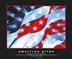 American Pride Flag Poster 20x16
