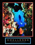 Challenge Diver Poster 22x28