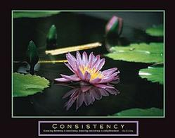 Consistency Pond Poster 28x22