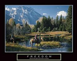 Freedom Cowboys Poster 28x22