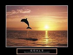 Goals Dolphin Poster 28x22