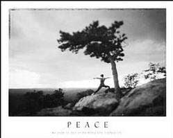 Peace Yoga Poster 28x22