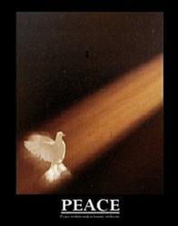 Peace Dove Poster 22x28