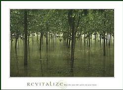 Revitalize Poster 24x18