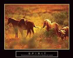 Spirit Horses Poster 28x22