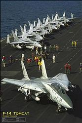 Aviation: F14 Tomcat Poster 24x36
