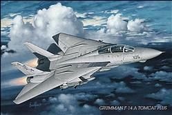 Aviation: F14A Tomcat Plus Poster 36x24