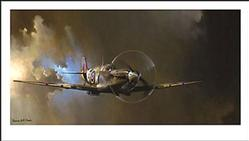 Aviation: MK-9 Spitfire Art Print