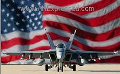Aviation: Stars & Stripes Forever Small