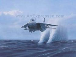 Aviation: Tomcat F-14