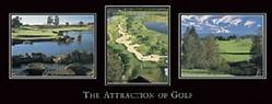 Attraction of Golf Poster 36x12