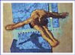 Olympic Diver Poster 28x22