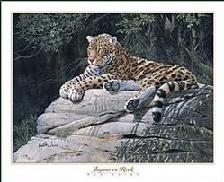 Jaguar on Rock Poster