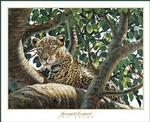 Serengeti Leopard Poster