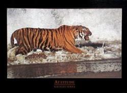 Attitude Tiger Poster