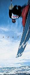 Skiing Soar Poster