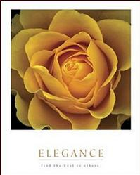 Yellow Rose Elegance Poster 16x20