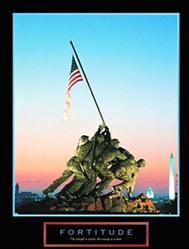 Iwo Jima Fortitude Poster 16x20