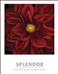 Red Poole Splendor Poster 16x20