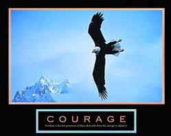 Bald Eagle Courage Poster 10x8