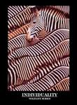 Zebras Individuality Poster 8x10