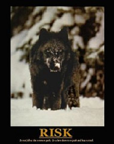Wolf Risk Poster 8x10