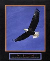 Bald Eagle Vision Poster 8x10