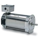 1/3HP LEESON 1750RPM 80D IP55 IEC 180VDC MOTOR 109081