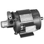 2HP LINCOLN 900RPM 215TC TENV 3PH MOTOR LM03991