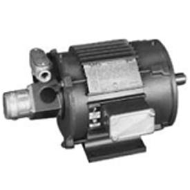 3HP LINCOLN 1170RPM 215TC TENV 3PH MOTOR LM03997