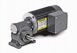1/6HP BALDOR 42RPM TEFC 1PH GEARMOTOR GC3326-L