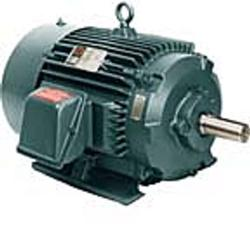 20HP RELIANCE 1760RPM 256T TEFC XE 3PH MOTOR P25G5275