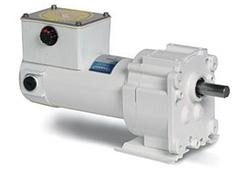 1/20HP LEESON 5RPM 12VDC EPOXY WASHGUARD GEARMOTOR M1125266