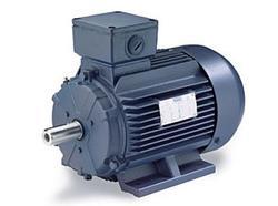 4HP LEESON 1180RPM D132S IP55 3PH IEC MOTOR 193305