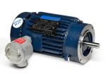 15HP MARATHON 3600RPM 254TC 230/460V EPFC 3PH MOTOR C307A