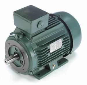 4HP LEESON 1750RPM D100LC IP55 3PH IEC MOTOR 193362.60