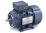 20HP LEESON 1760RPM D160LC IP55 3PH IEC MOTOR 193377