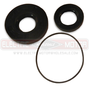 LEESON 006119.79 RIGHT ANGLE GEARMOTOR SEAL KIT