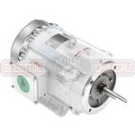 10HP LEESON 1800RPM 215JM TEFC 3PH MOTOR 141272.00