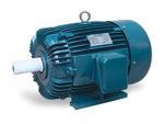 20HP FUKUTA 1760RPM D160L IP54 3PH IEC MOTOR AEEF160L