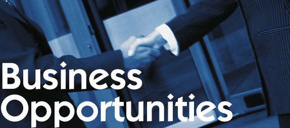 fdismerchantservices_business_opportunities