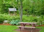 picnic-park