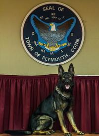 Police Dog Magnum