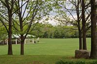 Tudek Park View 1
